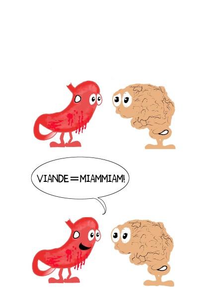 cerveau-estomac3-copie-1.jpg