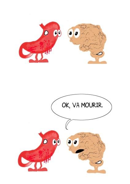 cerveau-estomac4.jpg