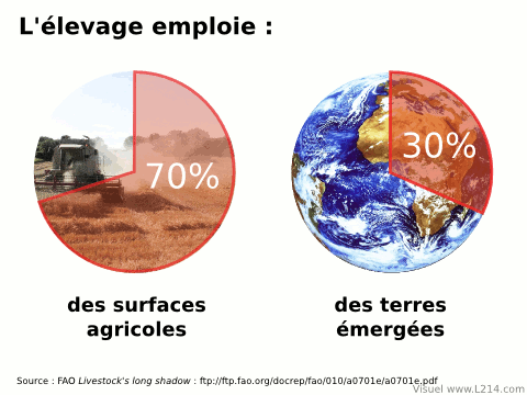 https://insolente-veggie.com/wp-content/uploads/2012/07/ressources-agricoles-480x3601.png